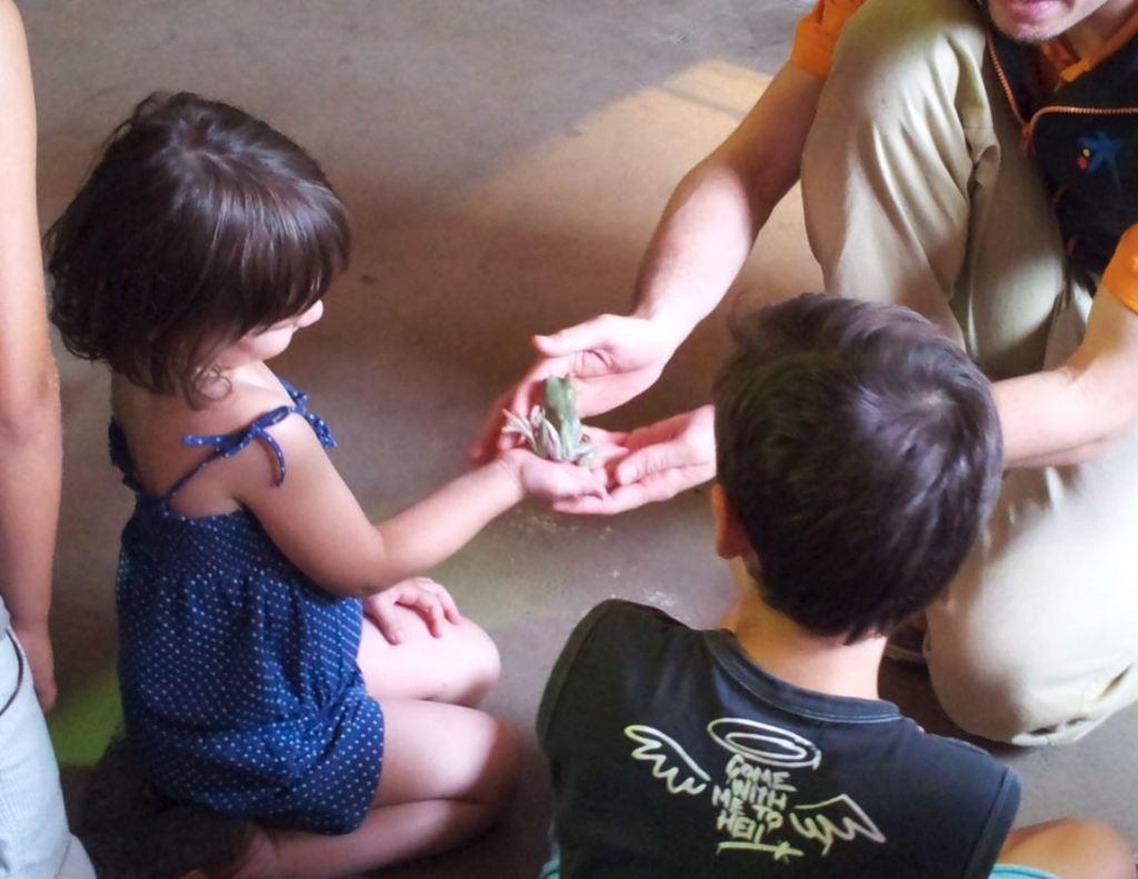sortir amb nens a toca-toca cosmocaixa