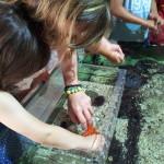 amb nens a cosmocaixa mediterranea