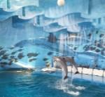 amb nens zoo delfines