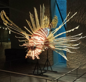 museu blau peix
